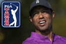 Woods has 5th back surgery, to miss Torrey Pines and Riviera