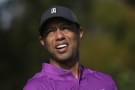 Thank goodness Tiger Woods is still with us