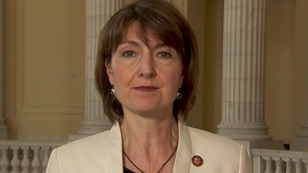 Rep. Cathy McMorris Rodgers (R-WA): It's Clear The Dems Don't Have The Votes To Pass Biden Agenda Items