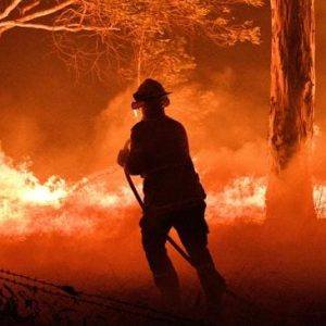 We don't just have a bushfire crisis. We have an arson crisis, too
