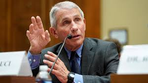Wuhan lab documents show Fauci 'untruthful' about gain-of-function research: critics