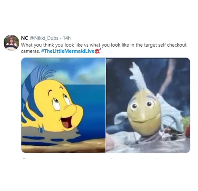 Flounder blog 2