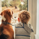 Photo of Dog Joining Boy in Time-Out Goes Viral. ~ CASH {Photo}