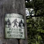 Bigfoot Sightings in North Carolina Have Skyrocketed Since 2016! ~ CASH {Listen}