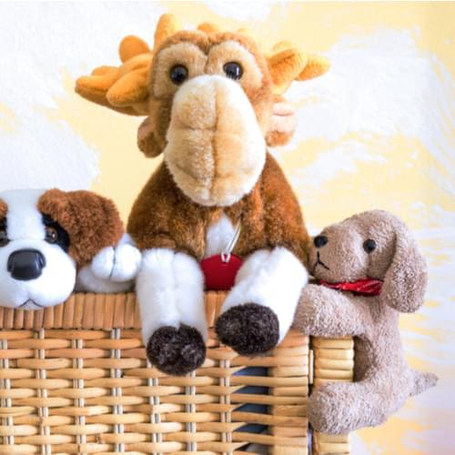 Teddy Bears Ride San Diego Roller Coaster Amid COVID-19 Pandemic {WATCH}