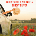 Where Should You Take a Sunday Drive?