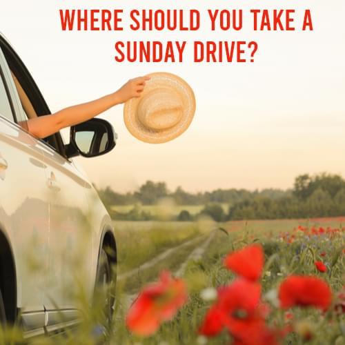 Sunday Drive quiz 500