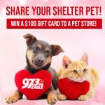 Share Your Shelter Pet- Winner Announced!