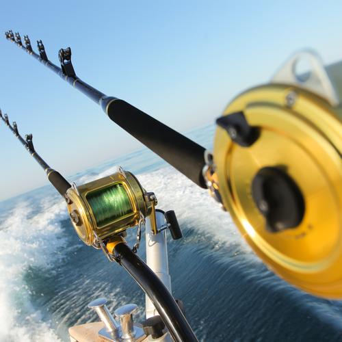 fishing reel short