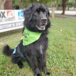 Alaska is an 11-Year-Old Boy Who's Been Waiting for Three Whole Months For Someone To Adopt Him
