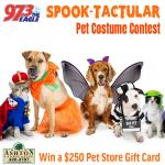 Spooktacular Pets