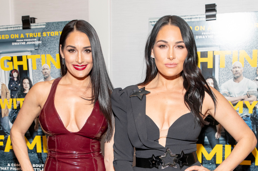 Nikki and Brie Bella Are Both Pregnant!