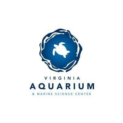 Take a Virtual Field Trip to the Virginia Aquarium, Meet the Animals and Get Virtual Lessons
