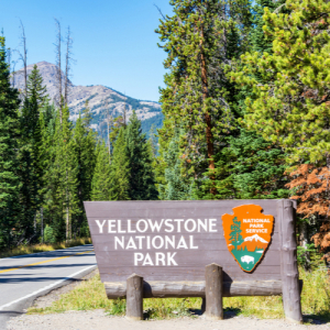 Take a Virtual Walk Through Yellowstone's Dragon's Mouth Spring, Upper Falls and More!