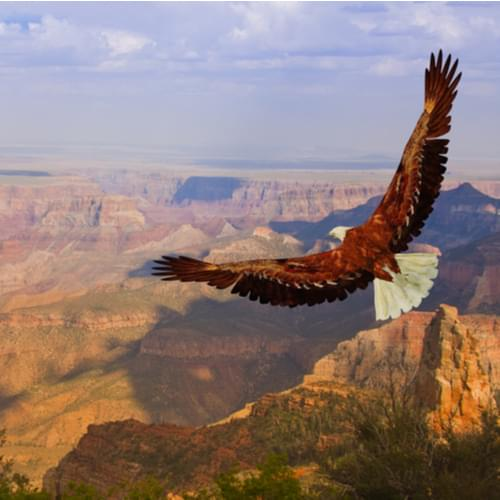 Get Free Admission at National Parks on These Select Dates 2021
