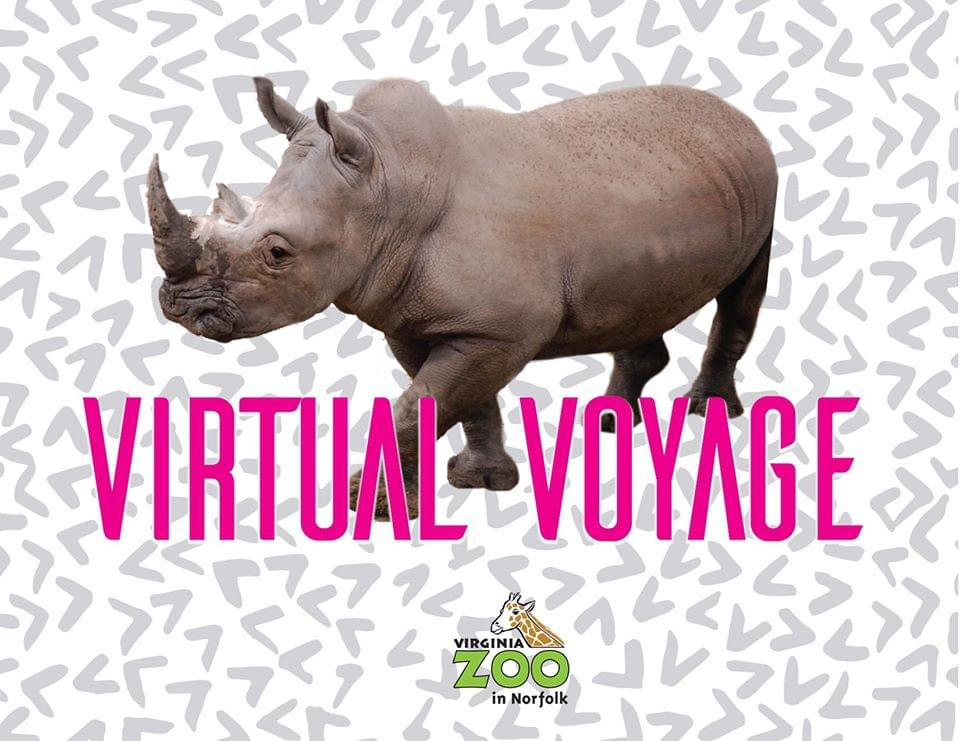 Virtual Voyage with the Virginia Zoo