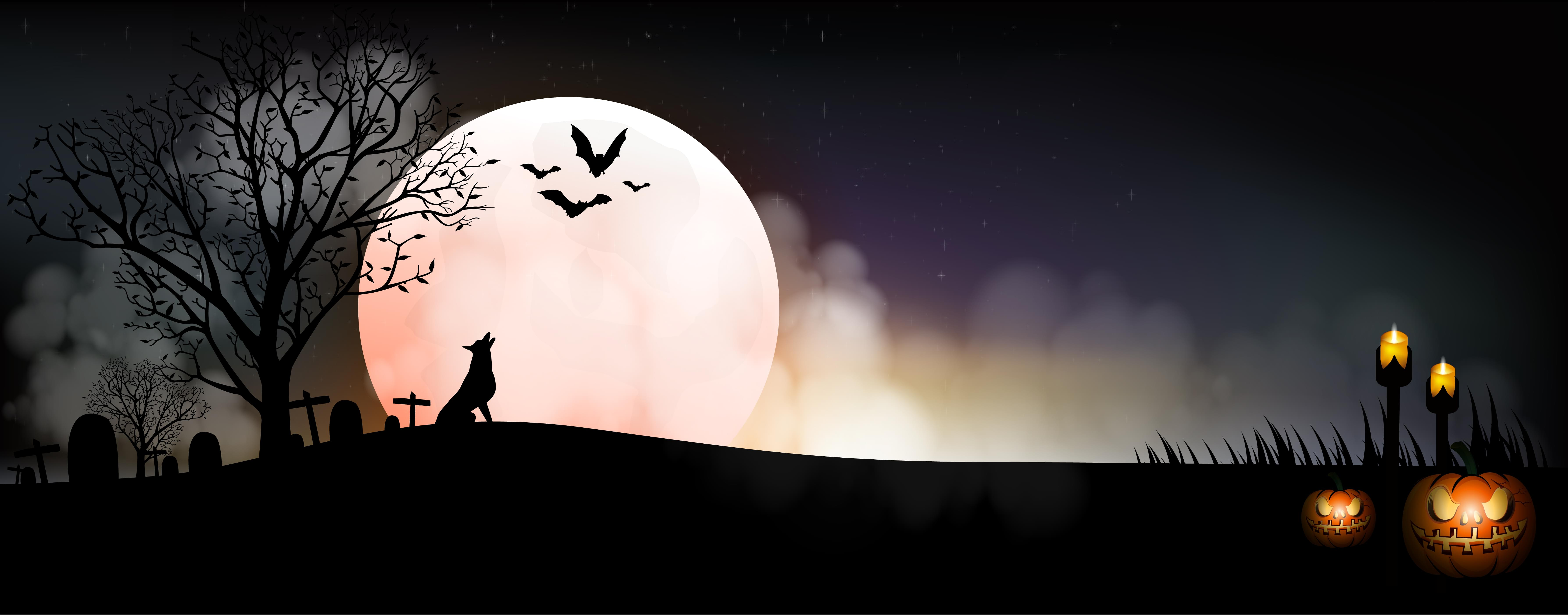 Are Witches on TikTok Cursing the Moon? A Real Witch Explains!