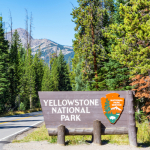 Take a Virtual Walk Through Yellowstone National Park's Dragon's Mouth Spring, Upper Falls and More!