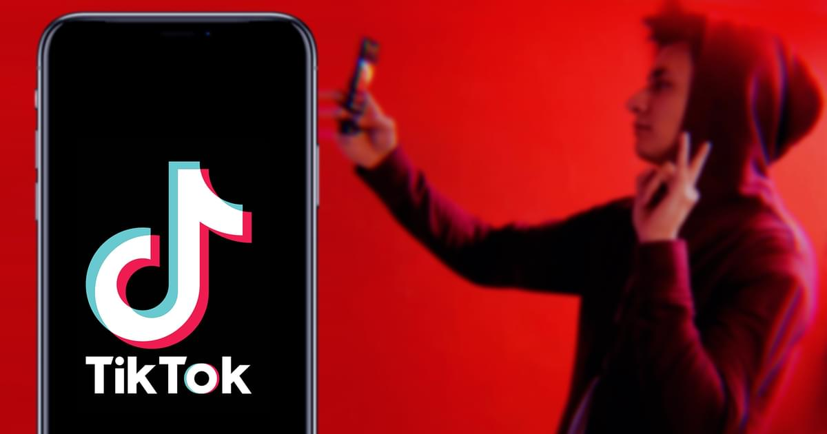 TikTok's Most-Viral Video of 2020 Was Even Bigger Than Skateboarding Guy [VIDEO]