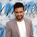 Liam Payne Pokes Fun at Zayn Malik's One Direction Exit in New TikTok Video