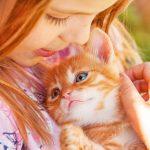 Virginia Beach SPCA Offers Free Digital Experience For Children