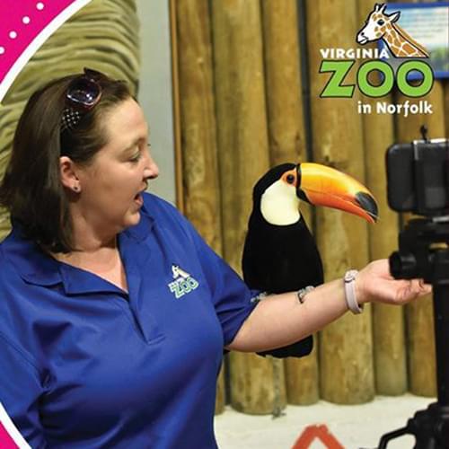 Zoo learning
