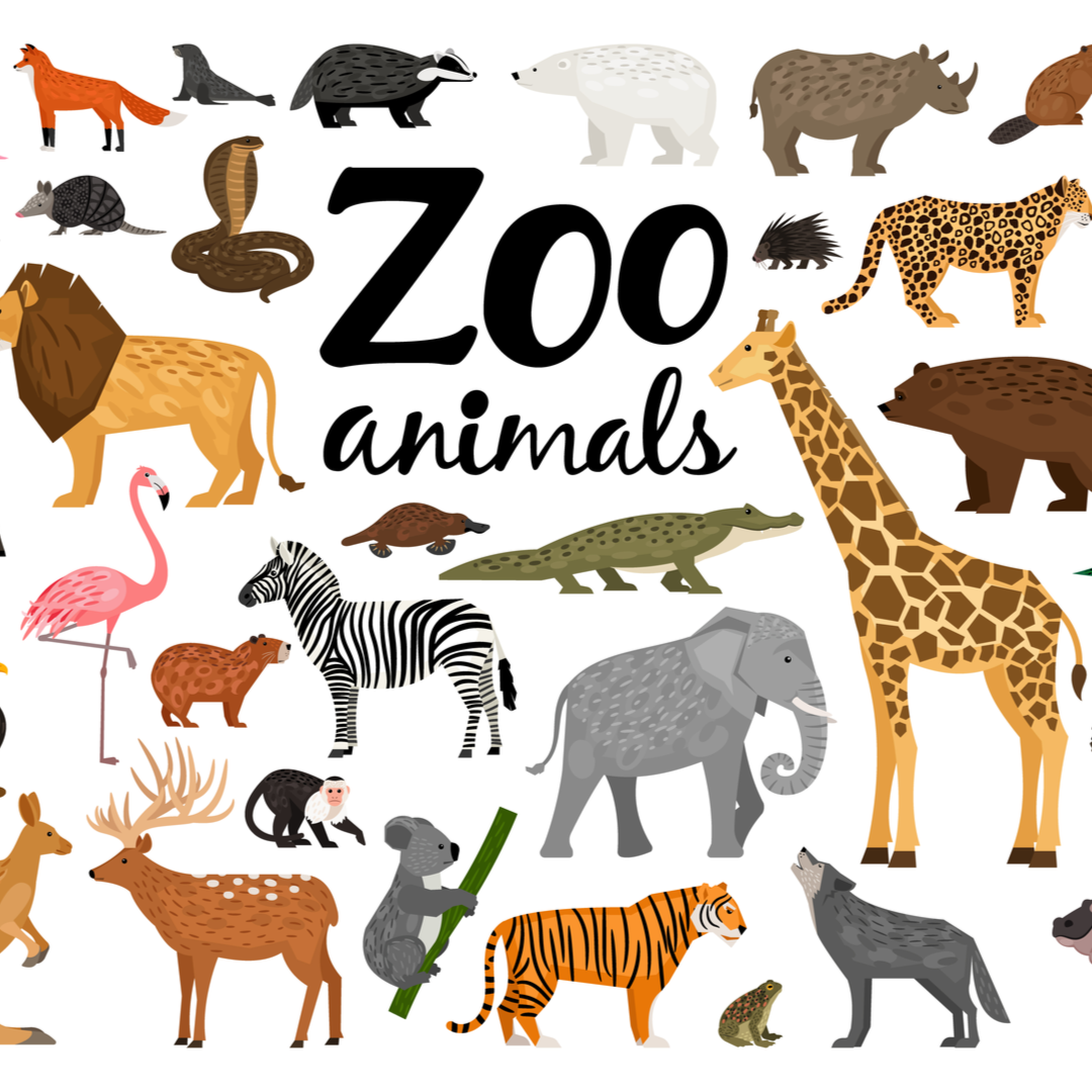 Kids Can Learn About Tigers, Giraffes and More with Free Activity Sheets from the Virginia Zoo