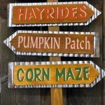 All the Hayrides, Corn Mazes and Pumpkin Patches and More in Hampton Roads