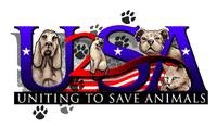 logo4_optimized_200