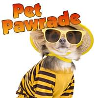 Pet Pawrade