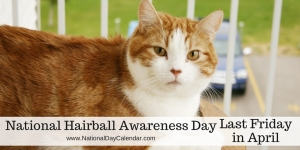 National-Hairball-Awareness-Day-Last-Friday-in-April-1024x512
