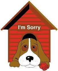 dog house daypg