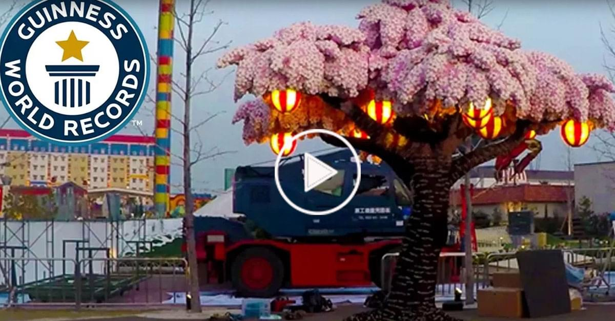 Wow! Largest Lego Brick Cherry Blossom Tree