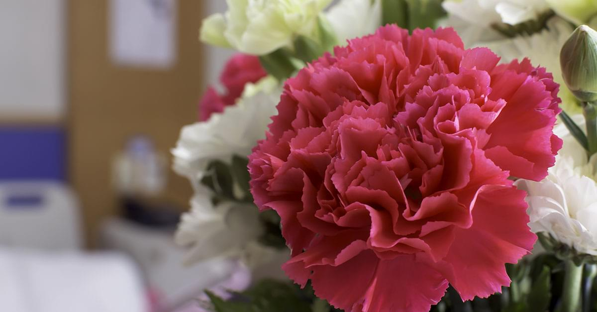 Royal Wedding Flowers Sent to Hospice Patients