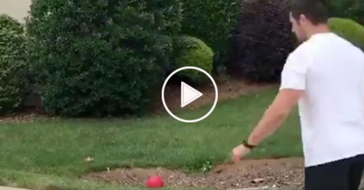 Watch: Panther's Gano Spoils Family Kickball Game