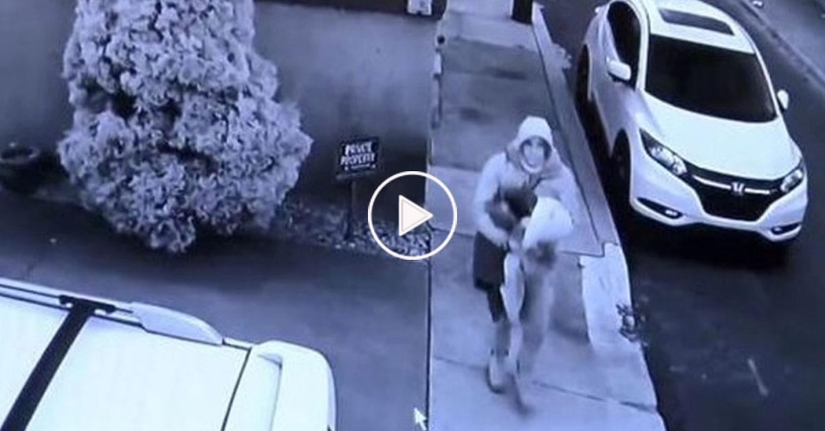 Watch: Man Leaves Boxes Filled with Kitty Litter and Feces Out for Porch Pirates
