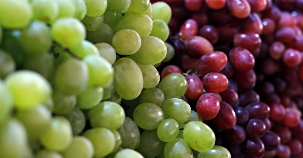 Frutas y verduras con Kuy: La Uva