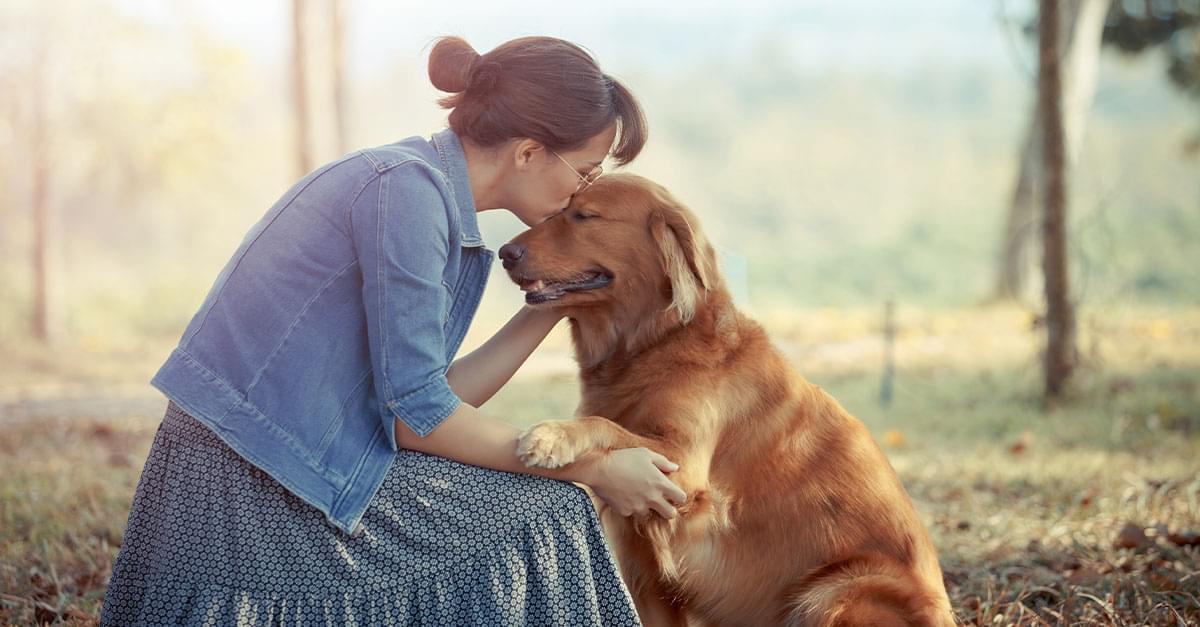 Dicen que el perro es el mejor amigo del hombre, pero de la mujer