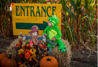 Pumpkin Patches, Corn Mazes, Scares and More!