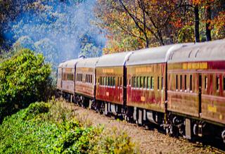 Locomotive Ride + Foliage = Fall in NC