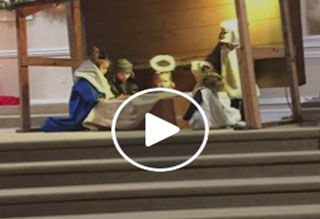 Little Sheep Goes Rogue at Nativity Scene