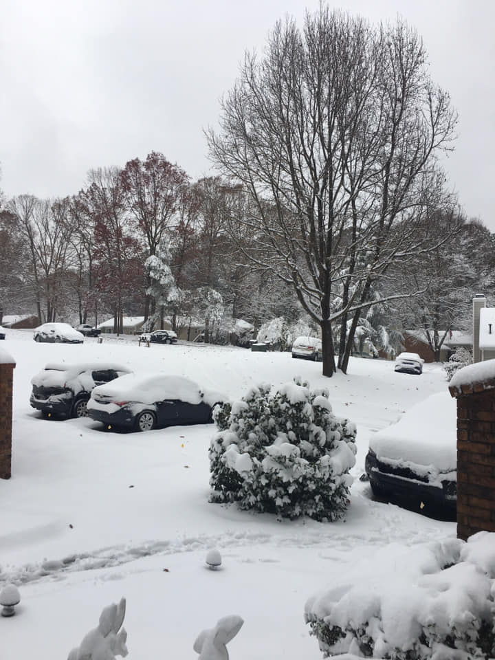 Your Snow Day Pictures - December 9, 2018