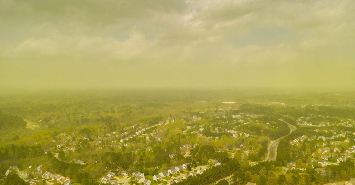 Photographer captures Severe Pollen in NC