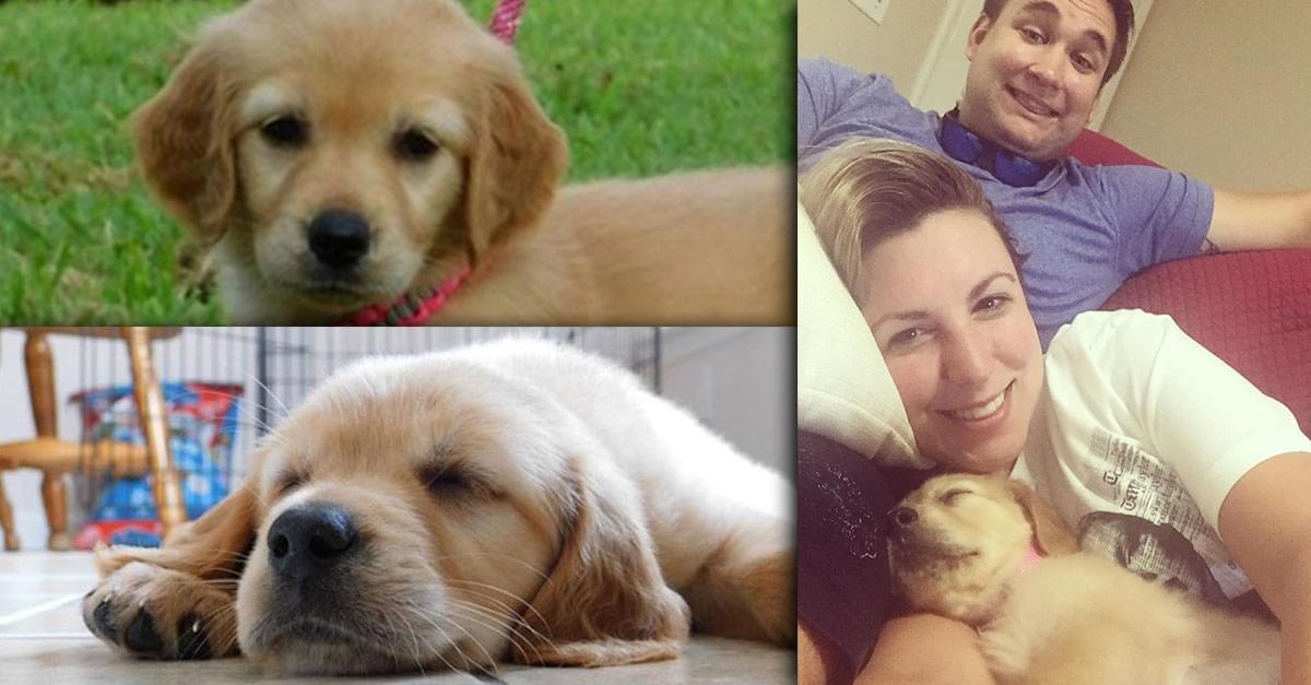 Brittani Got a Puppy! Meet Butter