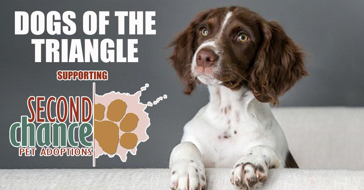 Be a part of the 'DOGS of the TRIANGLE' book project, now underway!