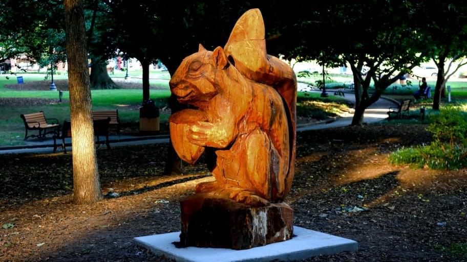 Berkeley-Squirrel-Nash-Square