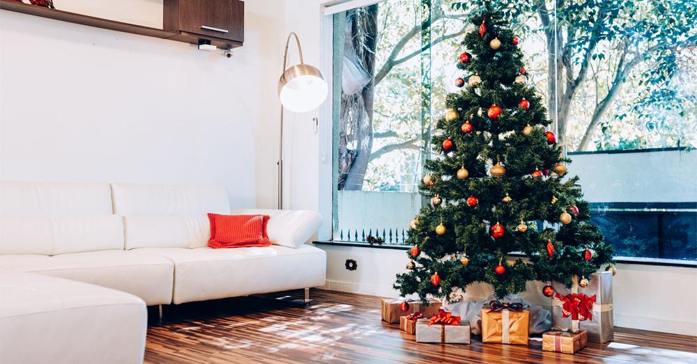 Recycle Your Christmas Tree This Season!