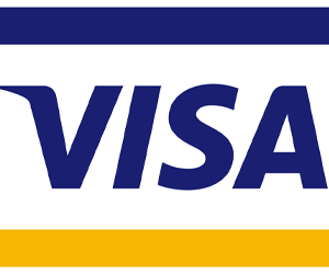 What the Headline: Visa Gift Card