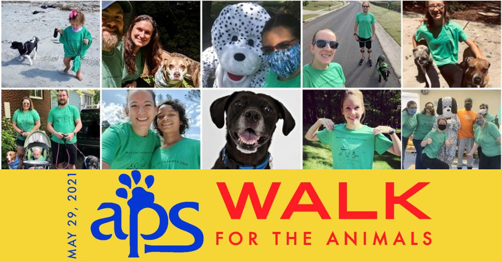 Join APS of Durham as they Walk For The Animals!