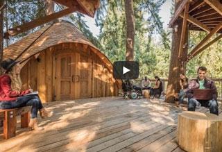 WATCH: Microsoft Meetings in Tree Houses